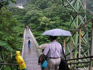 五橋めぐりハイキング