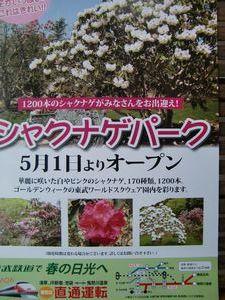 25分の1東京スカイツリー完成1周年634円