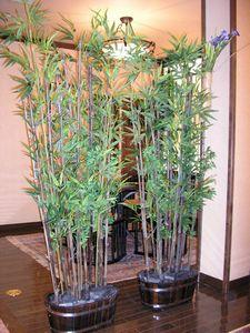 竹のパテーション(゜o゜)