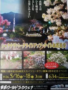 「シャクナゲパーク・ライトアップお花見会」開催のご案内☆