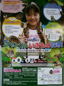夏休み企画☆ジャングルいきもの探検♪